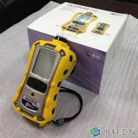美国华瑞MultiRAE Lite六合一有毒有害气体检测仪(PGM-6208六合一气体检测仪)