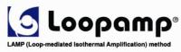 日本Loopamp