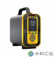 PTM600-OU手提复合式恶臭气体分析仪