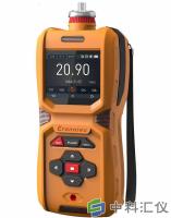 MS600-Ar便携式氩气检测仪