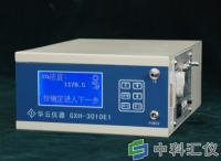 北京华云GXH-3010E1便携式红外线CO2分析仪/二氧化碳分析仪