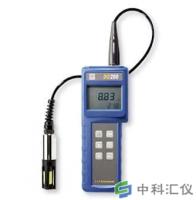 美国YSI DO200型溶解氧、温度测量仪